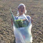 畑で野菜を見てから買いませんか